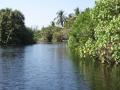 Krokodil Farm in La Ventanilla